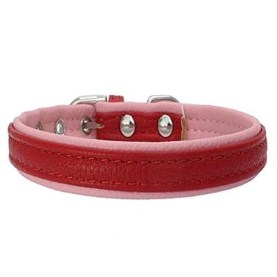Hmeng Hundehalsband, Hunde Katze Welpen Wasserdichte Kontrastfarbe Halsband Halsbänder Verstellbar Leather Buckle Halskette für Haustier Hunden Katzen