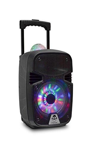 iDance Groove 215 100W Negro - Altavoces portátiles (20,3 cm, 100 W,...