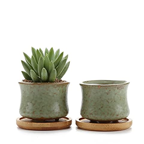Rachel's 6.5CM Spring Serial NO.3 Slim Shape Sucuulent Cactus Plant Pots Flower Pots Planters Containers Window Boxes With Bamboo Tray Green Set of