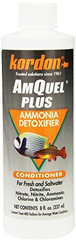 Kordon # 33448AmQuel Plus–Ammoniak Entgifter für Aquarium, 230ml