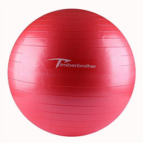 Timberbrother Palla da Ginnastica, Palla Fitness 55cm / 65cm / 75cm Diametro con la Pompa per lo Yoga, Pilates, Fitness, Fisioterapia, Palestra e esercizi a casa