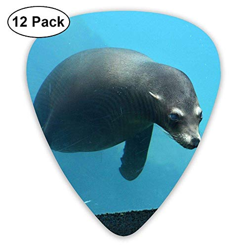 Premier Combo Pack (Underwater Sea Lions Toy Classic Guitar Pick (12 Pack) Player's Pack Electric Guitar,Acoustic Guitar,Mandolin,Guitar Bass,0.46/0.73/0.96 Mm Guitar)