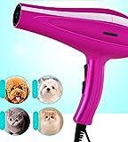 OKMINIOK Pet Hair Dryer Dog Blowing Hair Blow Dry Hair Dryer High Power Silent Bath Special Hair Dryer