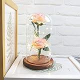 KItipeng Décoratifs Ornements,'La Belle Et La Bête Rose',Rose Eternelle...