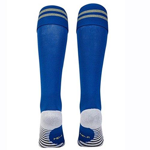 Nike 2018-2019 Chelsea Away Socks  Blue