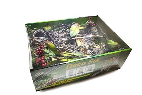 Lucky Reptile LDS-03 Life Experience Deco Set - Pet-mantis