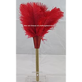 Duster ostrich feather with red feathers–Total Length Approx. 32cm