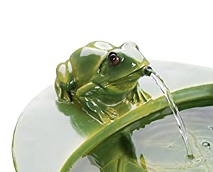 Small Solar Powered Water Feature with Frog PC505