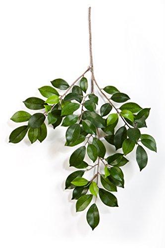 artplants Künstlicher Ficuszweig AJITH mit 60 grünen Blättern, 45 cm – Kunst Ficus/Deko Zweig