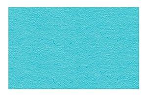 Ursus 3774631 - Cartulina (DIN A4, 300 g/m², 50 Hojas), Color Azul Claro