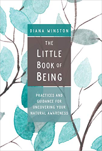 The Little Book of Being: Practices and Guidance for Uncovering Your Natural Awareness (English Edition)
