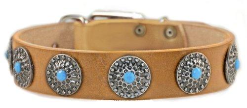 Dean and Tyler Hundehalsband Queenie, mit blauen Steinen, Nickel-Hardware, 76,2 x 3,8 cm, für einen Halsumfang von 71 cm bis 81 cm, Hellbraun