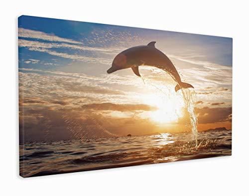 M2M Prints Leinwanddruck, Motiv Delfin springt ins Sonnenaufgang, Canvas, Multi, 76x51 cm (30x20 Inches)