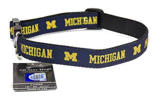 All Star Dogs Michigan Wolverines Band Hundehalsband, Sm 1in w - Fits 8in-12in, Blau (Michigan Band)
