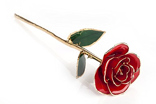 ZJchao regalo donna-Rosa eterna-Idea Regalo Anniversario, rosso, 11inches