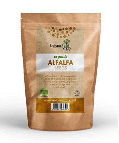 Natures Root BIO Alfalfa Samen - Aus biologischem Anbau 500g - Von der Soil Association als biologisch zertifiziert