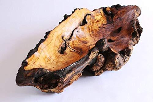 Jahrhundert Holz Geschnitzt (Holzschale, Hand geschnitzt Jahrhundert alten Olivenholz. Gratisversand.)