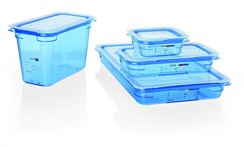 Gastronormbehälter Inklusive Deckel, GN 1/2, Optionale Größen wählbar, Serie 88, ABS Kunststoff, HACCP (A2 – 100 mm Tiefe)