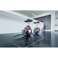 Dyson Cinetic Big Ball Animal Pro 2 Torbasız Silindir Süpürge, 700 W, ABS Polikarbon Gövde, Karbon Fiber Başlık, Kırmızı