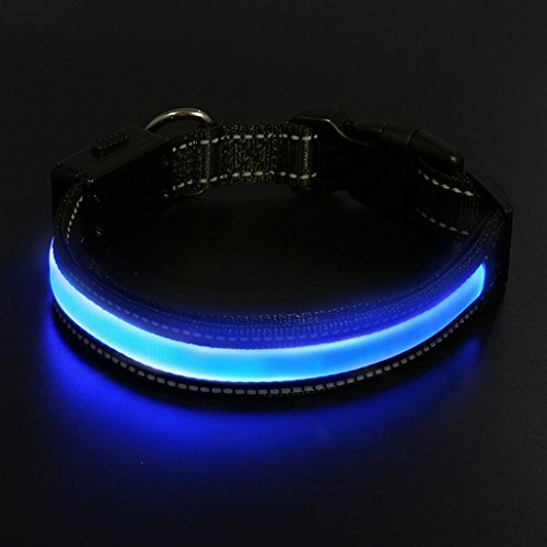 LED Hunde Halsband, LaiXin Halsband Hund Leuchtend Aufladbar Solaraufladung oder USB-Laden mit USB-Kabel Hundehalsband Nylon Leuchtender Wasserdichte Halsbänder LED Verstellbar für Haustiere Blau