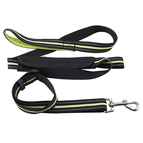 fish Pet Dogs Leash Laufen Elastizität Handfrei Haustiere Training Produkte Hundegeschirr Halsband Jogging Blei Einstellbare Taille Seil, Grün, 199 X2.5cm