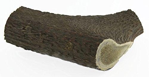 Hundesnack Rothirsch Geweih Kausnack – extra große Größe (XL) Mindestgewicht 225 Gramm (1 Stück) - 6