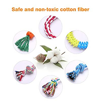 WeFine Puppy Dog Chew Toys Teething Training?10pcs Dog Rope Toys 100% Natural Cotton Rope for Small and Medium Dog from WeFine