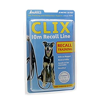 The Company of Animals Recall Line 10m, Lightweight, Soft to hold, Perfect for Recall Training, Chasing, Dog & Puppy… 11