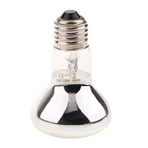 Sharplace 2 Pieza Bombilla de Reptil Tortuga Anfibio Nocturno Luz Infrarroja 100W Calor Lámpara Calefacción