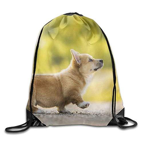 False warm warm Cute Corgi Drawstring Backpack Rucksack Shoulder Bags Training Gym Sack for Man and Women