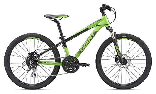 GIANT XTC - Bicicleta de montaña para niño de 24 Pulgadas, de Aluminio, para niño MTB Junior, Color...