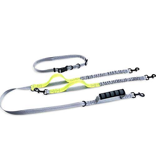 Strimm Reflektierendes Nylon-Gurtband Gepolsterte Freisprechleine Doppel-Bungee-Tandem-Hundeleine-Koppler-Splitter für 2 kleine, mittelgroße Hunde bis 100lbs