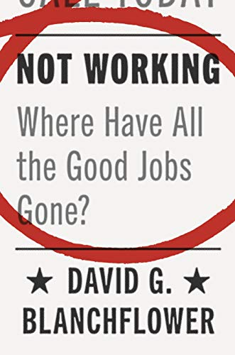 Not Working: Where Have All the Good Jobs Gone? (English Edition)