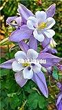 Graines/Sac ancolie 50pcs Flores, vivaces Graines de fleurs d'intérieur aussi, graines pour l'extérieur, graines Er For Home Garden: 17...