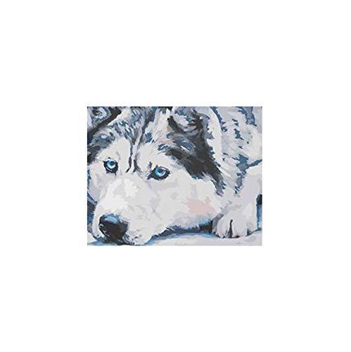 YKCKSD Die Traurige Husky Tier Bild Acryl DIY Farbe Nach Zahlen Auf Leinwand Für Inneneinrichtungen Rahmenlos 40X50CM (Husky-starter-kit)