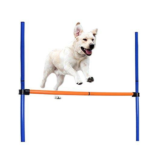 jannyshop Juguetes de Entrenamiento para Perros y Mascotas, Desmontables, para Actividades al Aire Libre, Equipo de Entrenamiento de Agilidad, Saltar a la urdimbre, Altura Ajustable