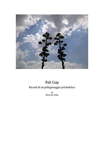 Pali Gap Italian Edition Ebook Marcello Tobia Amazonin Kindle
