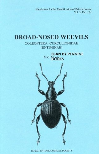 Broad-nosed weevils: Coleoptera: curculionidae (entiminae) (Handbooks for the identification of British Insects)