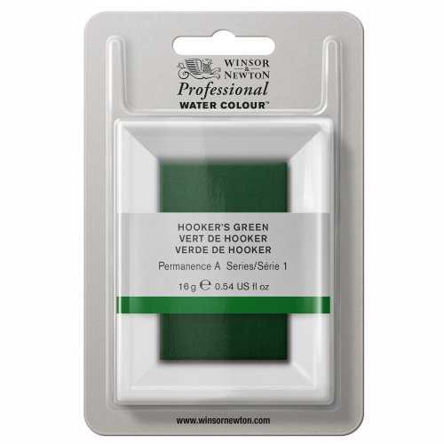 winsor-newton-large-pan-professional-water-colour-hookers-green