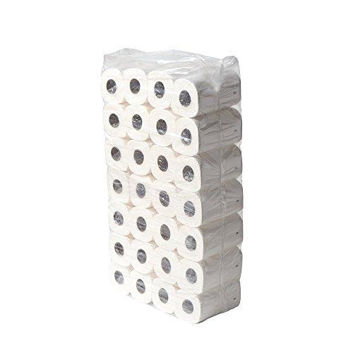 DJGroup Toilettenpapier-Rollen EU-Ecolabel 2-lagig Weiß, 250 Blatt Zellulose-Tissue, 56 klein-Rollen (7 x 8)