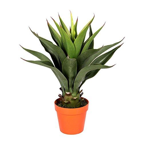 Homescapes Kunstpflanze Immergrün Century Plant Agave Americana im Topf 60 cm Hoch