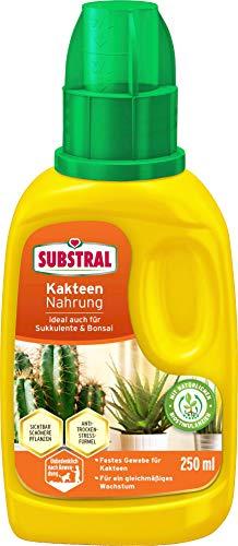 Substral Kakteen Nahrung, Flüssige Spezialnahrung für Kakteen, Sukkulente und für Bonsai mit natürlichen Biostimulanzien, 250 ml Flasche