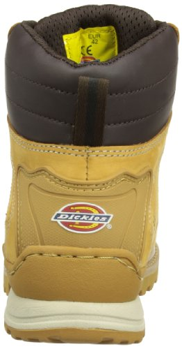 DICKIES  Canton, bottes chelsea homme Miel Beige
