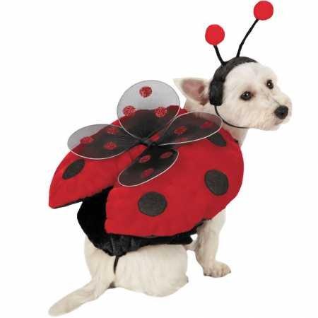 Be Good Hundekostüm Marienkäfer mit Flügeln, Größe ()