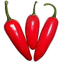 Jalapeno Pepper 10 Samen (Massenträger)
