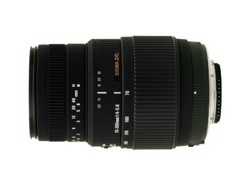 Sigma 70-300/4-5.6 BMD Macro DG - Objetivo para Nikon (distancia focal 70-300mm, apertura f/4-5,6, macro, diámetro: 58mm) color negro