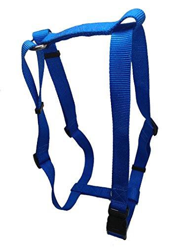 hundeinfo24.de Hundegeschirr Blau für kleine Hunde und Welpen, XS – S, 10mm breit, Nylon Stoff, stufenlos verstellbar, Extra Stark, auch für Katzen, chico