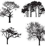 Motivstempel * Bilderstempel * Stempel * Vier Bäume