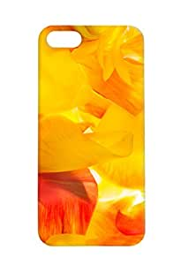100 Degree Celsius Back Cover for Apple iPhone 5S (Designer Printed Multicolor)