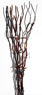 Brauns Heitmann LED-beleuchteter Herbstzweig für Dekoration mit Try-me-Funktion, 50 cm, 20-teilig, warm-weiß 6834 von Brauns Heitmann - Lampenhans.de